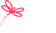Dragonfly Marketing